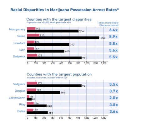 racial disparities in marijuana possession arrest rates by top county