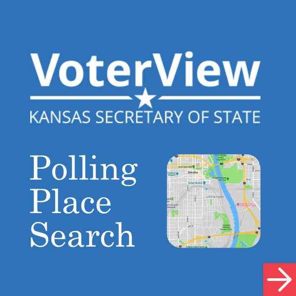 Voter View